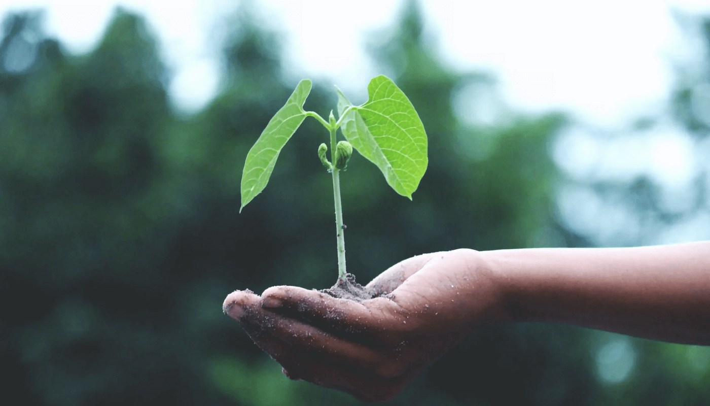 The global Agri-FoodTech startups reimagining the future of food