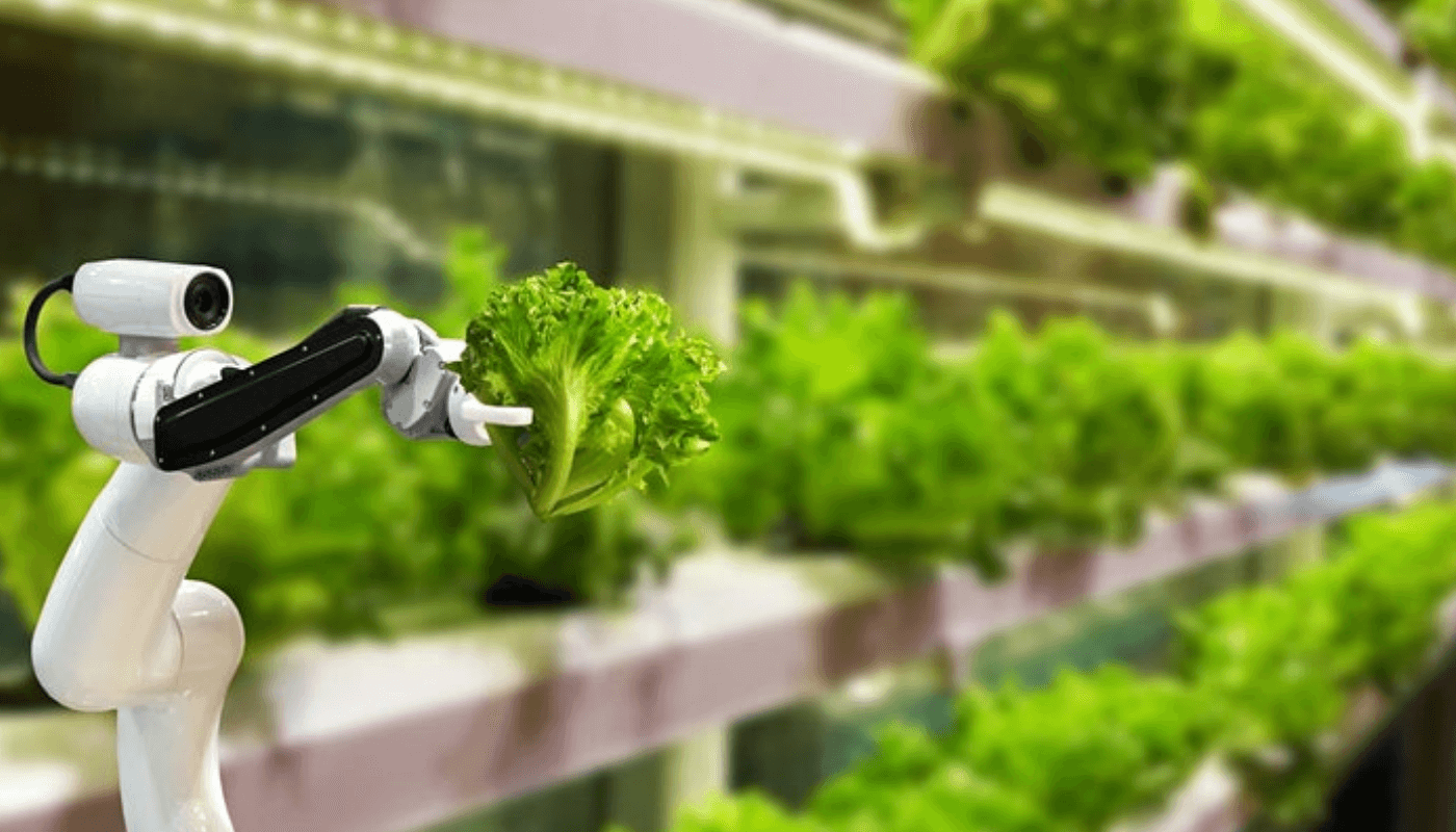 The present and future of agrifood tech innovation amid the covid19 crisis
