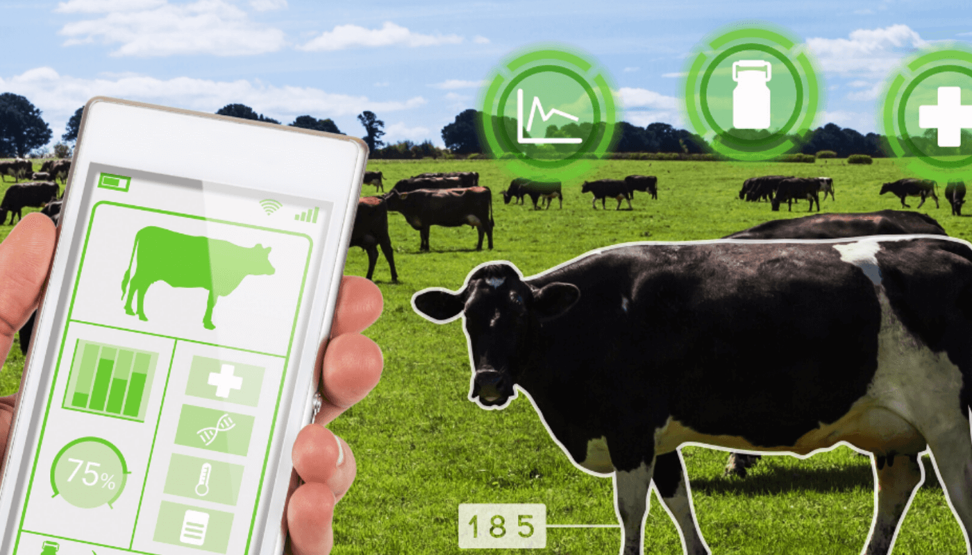 Webinar: investing in agri-food tech & building resilient food systems
