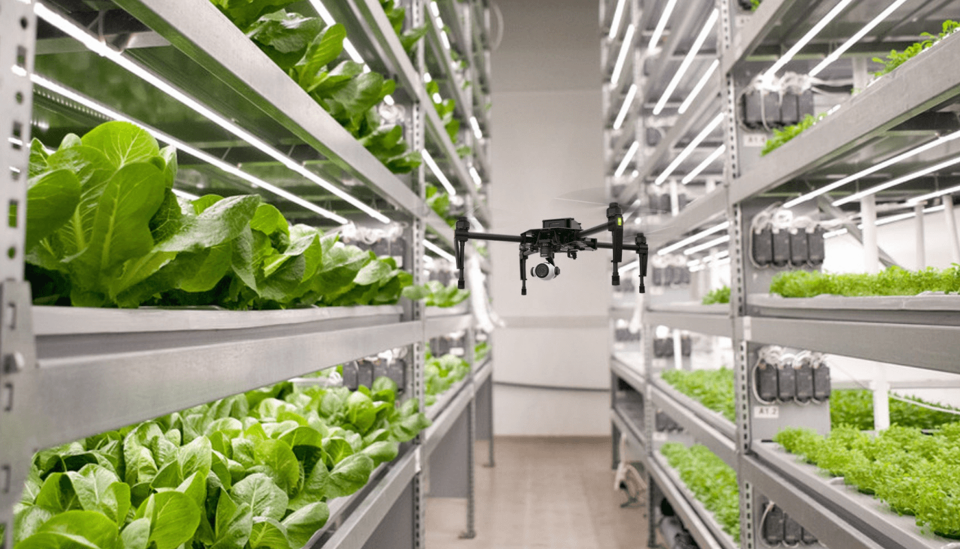 An interview with iFarm: turning the general consumer into a city farmer